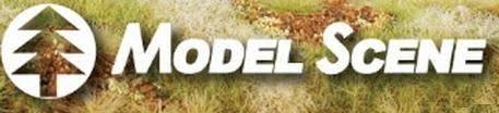 Model-Scene