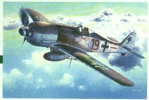 Hasegawa Focke Wulf Fw190A-8  1:48